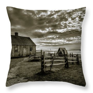 Throw Pillow featuring the photograph The Doucet House - Bw by Chris Bordeleau