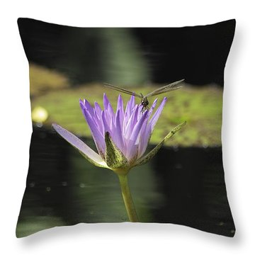 The Dragonfly And The Lily Throw Pillow by Gary Dean Mercer Clark