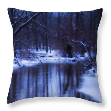 The Dream  Throw Pillow by Cathy  Beharriell