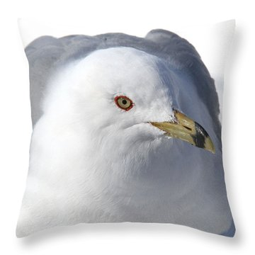 Throw Pillow featuring the photograph The Dreamer by Doris Potter