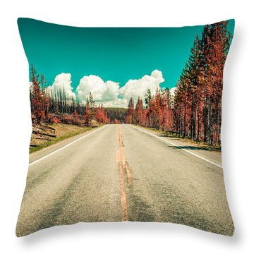 The Dried County Throw Pillow