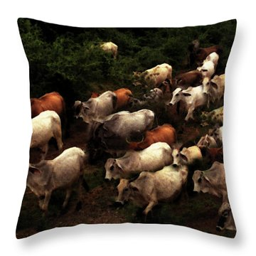 The Drive Home In Mexico Throw Pillow