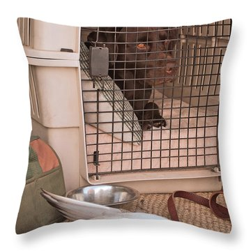 The Duck Dog Throw Pillow by Donna Greene