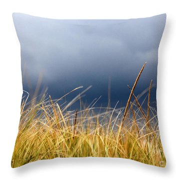 Throw Pillow featuring the photograph The Tall Grass Waves In The Wind by Dana DiPasquale