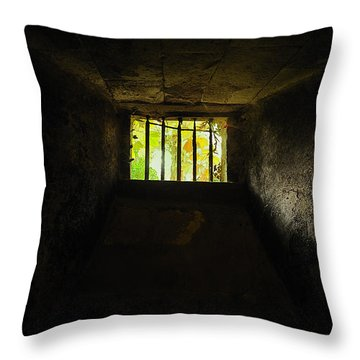The Dungeon Throw Pillow