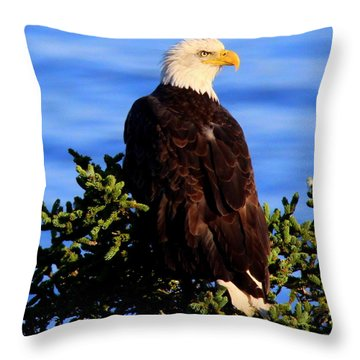The Eagle Has Landed 2 Throw Pillow