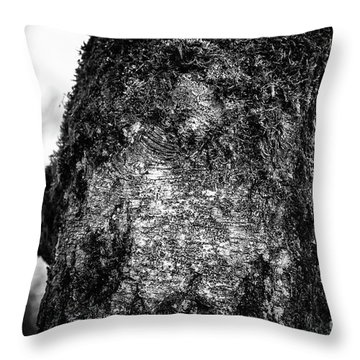 The Eagle In The Tree Throw Pillow