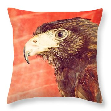 The Eagle Throw Pillow by Pedro Venancio
