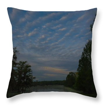 The Early Birds Throw Pillow