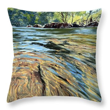 Throw Pillow featuring the painting The East Dart River Dartmoor by Lawrence Dyer
