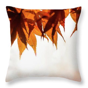 The Eaves Of Season Throw Pillow