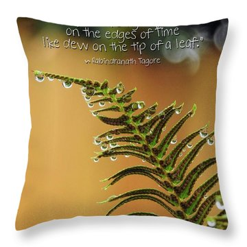 Throw Pillow featuring the photograph The Edges Of Time by Peggy Hughes