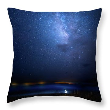 Throw Pillow featuring the photograph The Egret And The Milky Way by Mark Andrew Thomas