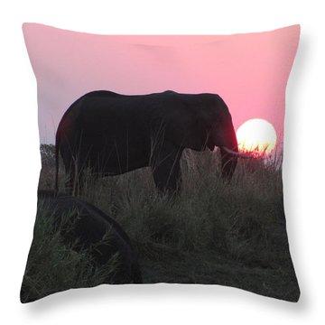 The Elephant And The Sun Throw Pillow