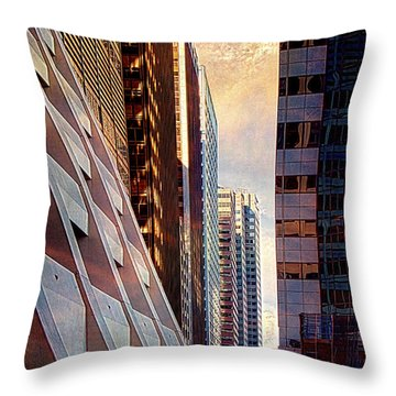 The Elevated Acre Throw Pillow