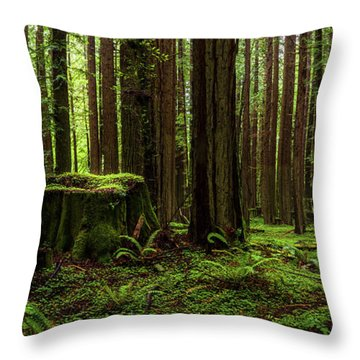 The Emerald Forest Throw Pillow
