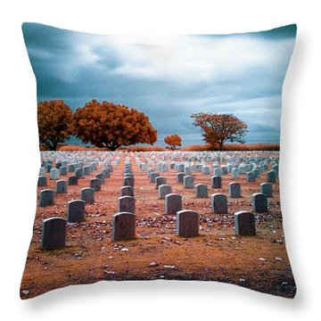 The End 2 Throw Pillow by Skip Nall