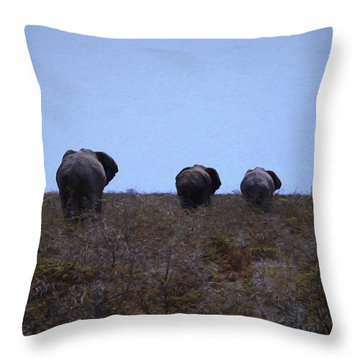 The End Throw Pillow by Ernie Echols