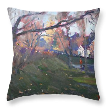 The End Of Autumn Day In Glen Williams On Throw Pillow