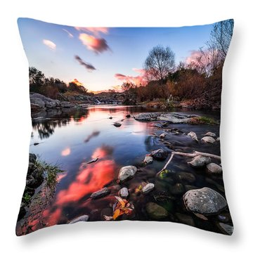 The End Of Autumn Throw Pillow