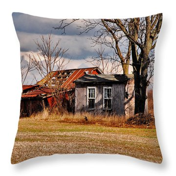 The End Of Days Throw Pillow by Lois Bryan