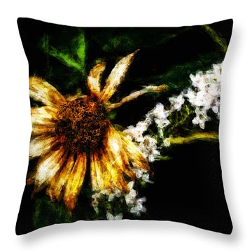 The End Of Summer Throw Pillow by Cameron Wood