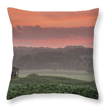 The English Landscape 2 Throw Pillow