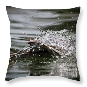 Throw Pillow featuring the photograph The Escape by Douglas Stucky