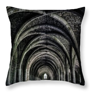The Eternal Search Throw Pillow