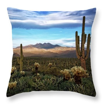 Throw Pillow featuring the photograph The Evening Glow  by Saija Lehtonen