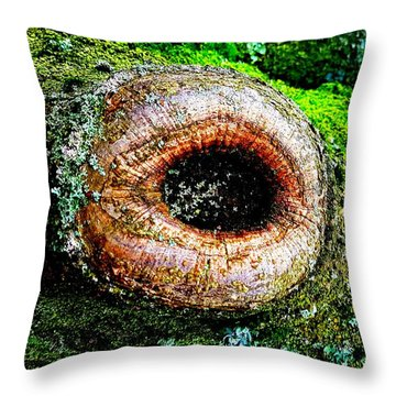 The Eye In The Tree Throw Pillow