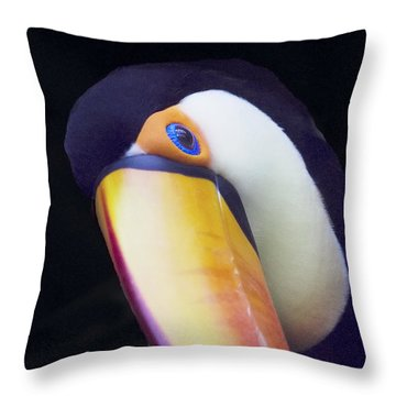 The Eye Of A Toucan Throw Pillow by Elvira Butler