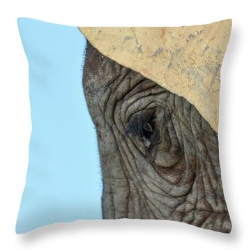 The Eye Of An Elephant Throw Pillow