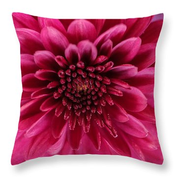 The Eye Of Pink Flower Throw Pillow