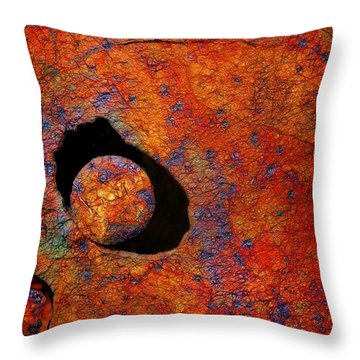 The Eye Of The Pelican Throw Pillow
