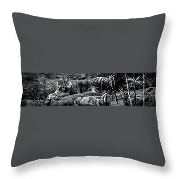 Throw Pillow featuring the photograph The Eye Of The Tiger by Ryan Smith