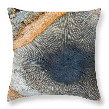 The Eye Of The Tree Throw Pillow