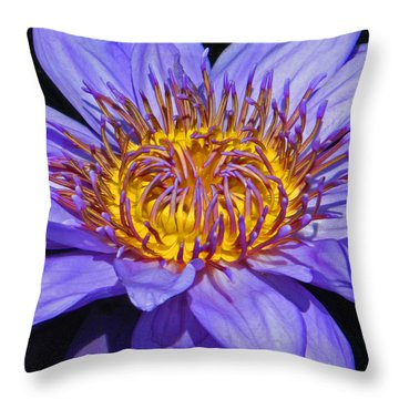 The Eye Of The Water Lily Throw Pillow