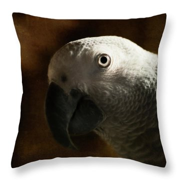 The Eyes Are The Windows To The Soul Throw Pillow