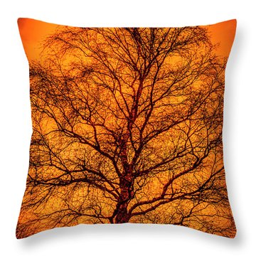 The Fable Known As Hell Throw Pillow