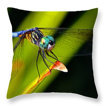 Throw Pillow featuring the photograph The Face Of A Dragonfly 003 by George Bostian