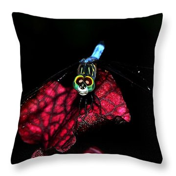 Throw Pillow featuring the photograph The Face Of A Dragonfly 004 by George Bostian