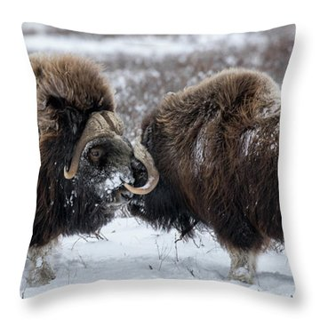 The Face Off  Throw Pillow
