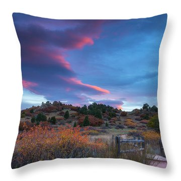 The Fall Meadow Throw Pillow