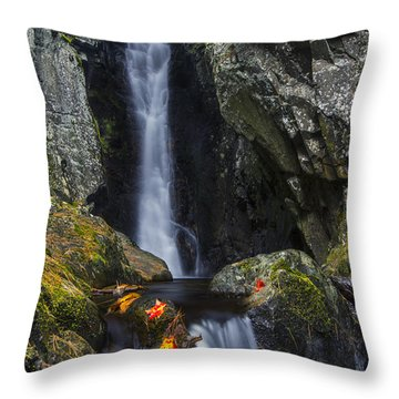 The Fall Of Song In Autumn Throw Pillow