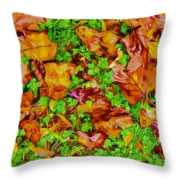 The Fall Of Summer II Throw Pillow by Dan Carmichael