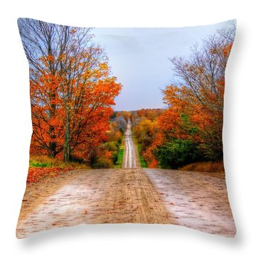 The Fall Road Throw Pillow by Michael Garyet