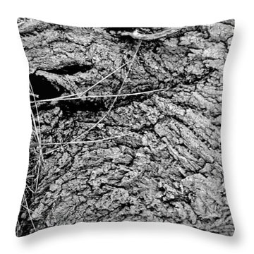The Fallen - Dragon Eye Throw Pillow