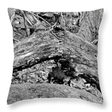 The Fallen - Dragon Throw Pillow