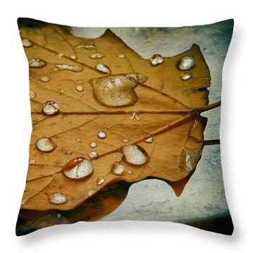 The Fallen Leaf Throw Pillow by Aleksander Rotner